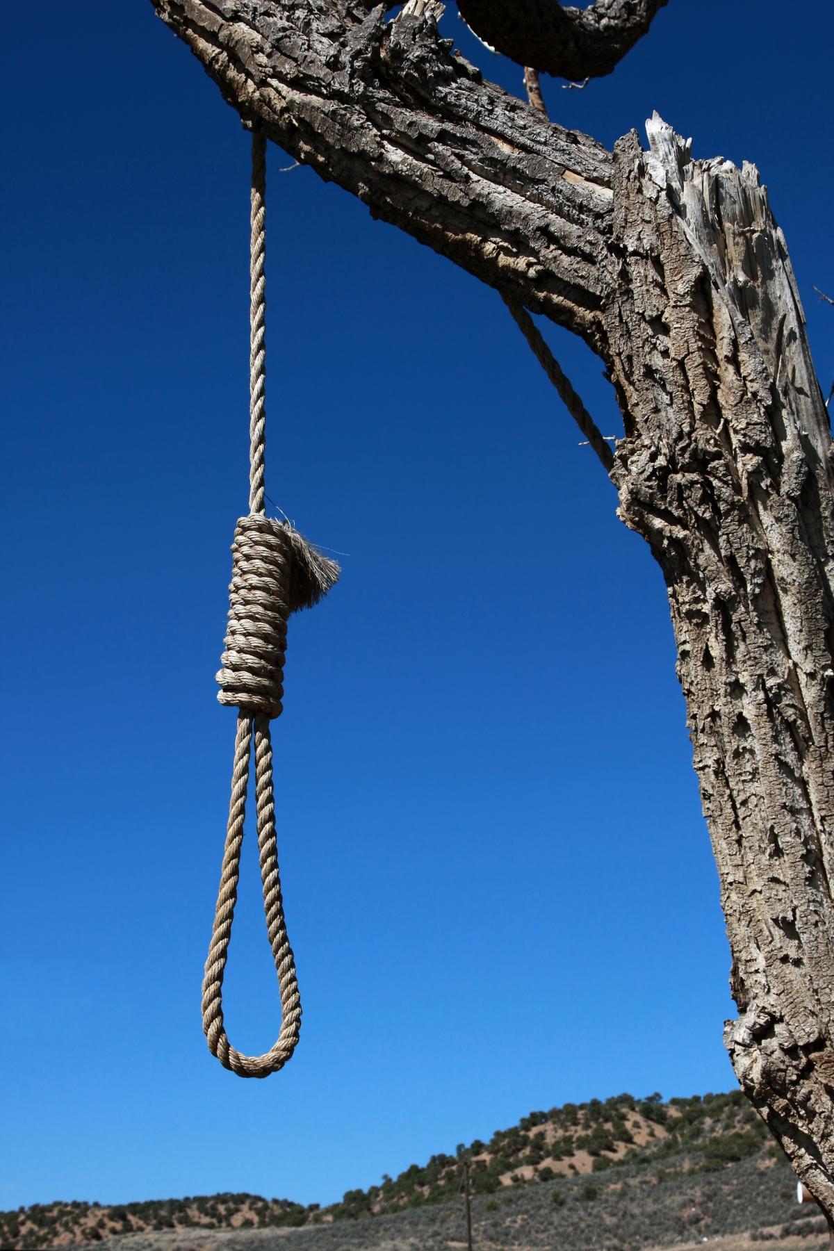 Hanging Noose on tree