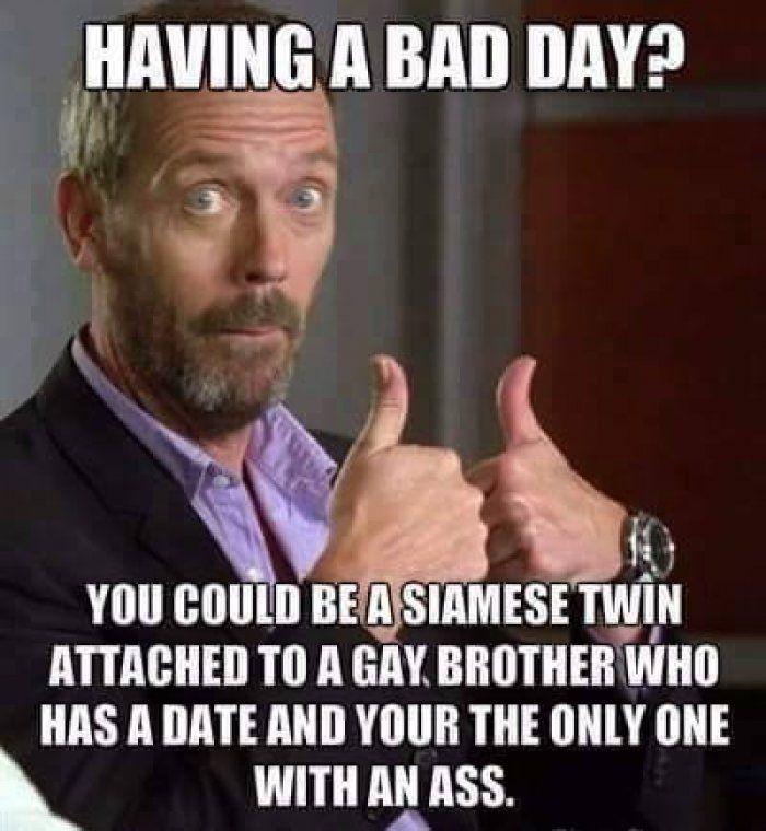 Siamese joke meme